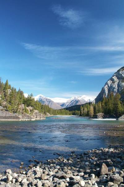 In Law Photograph - Bow River In Fall by Bryan Garnett-law