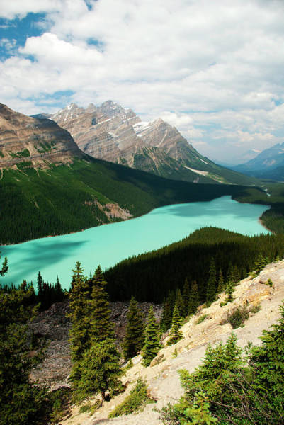 Peyto Lake Wall Art - Photograph - Bow Summit, Peyto Lake by Emily Riddell