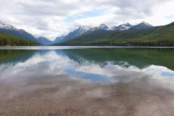 Wall Art - Photograph - Bowman Lake by Lori Deiter