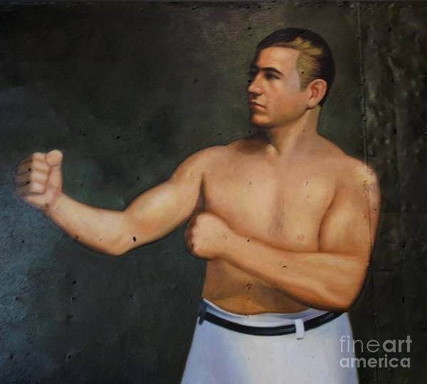 Wall Art - Photograph - Boxer 2 by Anthony Schafer