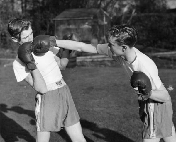 Reach Wall Art - Photograph - Boxer Twins by Greated