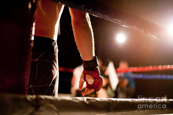 Muscular Wall Art - Photograph - Boxing Match by Aerogondo2