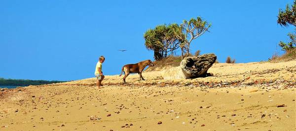 Photograph - Boy With His Dog On The Beach 2 by Joan Stratton