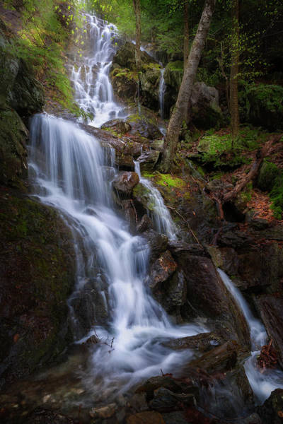 Photograph - Brace Mountain Falls by Bill Wakeley