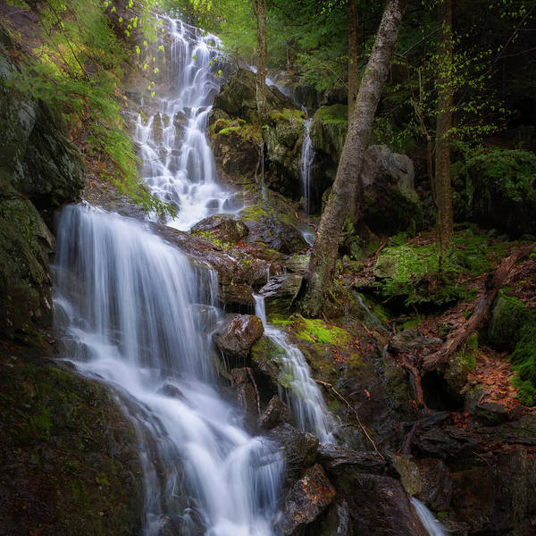 Wall Art - Photograph - Brace Mountain Falls Square by Bill Wakeley