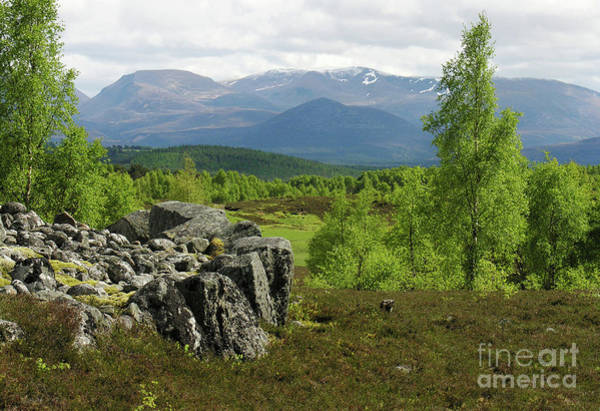 Photograph - Braeriach From Granish - Cairngorm Mountains by Phil Banks
