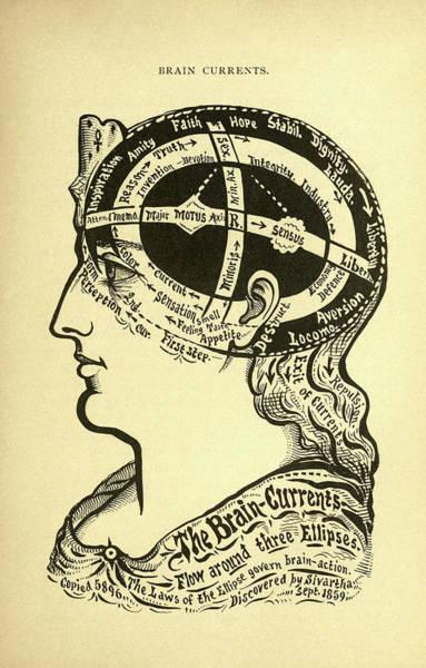 Wall Art - Drawing - Brain Currents by Alesha Sivartha