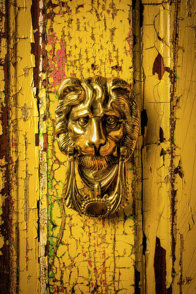 Wall Art - Photograph - Brass Door Lion Door Knocker by Garry Gay