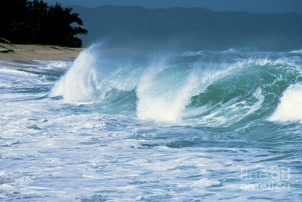 Wall Art - Photograph - Breaking Wave North Shore by Thomas R Fletcher