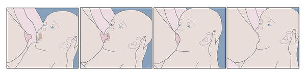 Wall Art - Photograph - Breastfeeding, Latching by Monica Schroeder
