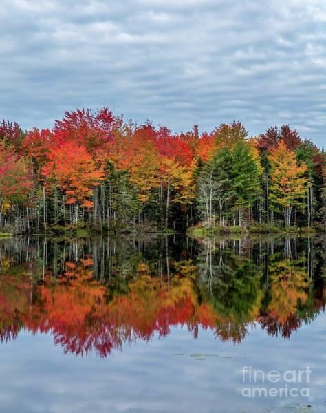 Photograph - Breath Of Autumn by Karin Pinkham