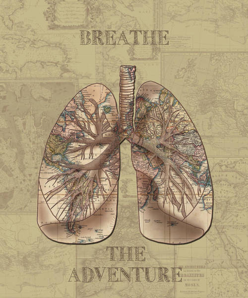 Anatomy Digital Art - Breathe The Adventure 3 by Bekim Art