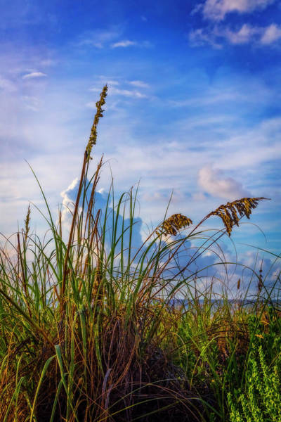 Wall Art - Photograph - Breezy Beach by Debra and Dave Vanderlaan