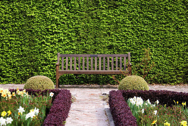 Lamontagne Photograph - Brick Path To Bench In Front Of Hedge by Photos Lamontagne
