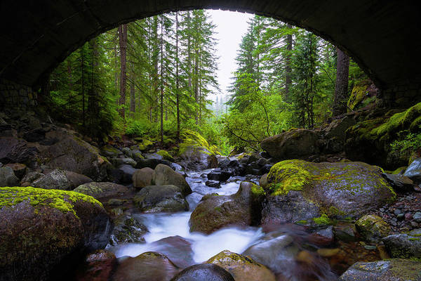 Moss Green Photograph - Bridge Below Rainier by Chad Dutson