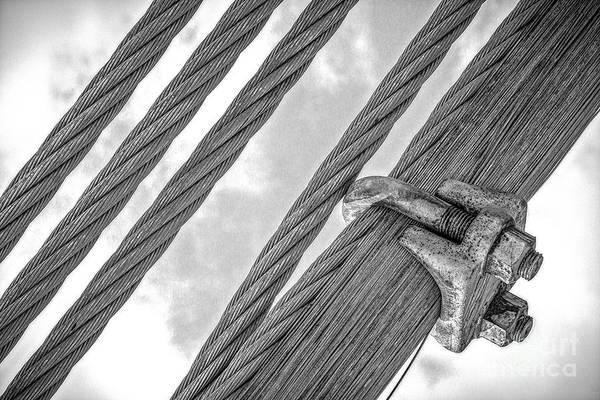 Photograph - Bridge Cables by Imagery by Charly
