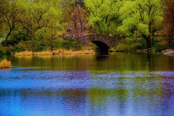 Bridge In Central Park Art Print