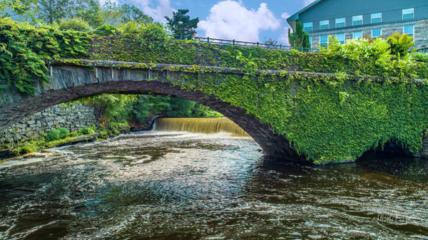 Photograph - Bridge Of Flowers by Michael Hughes