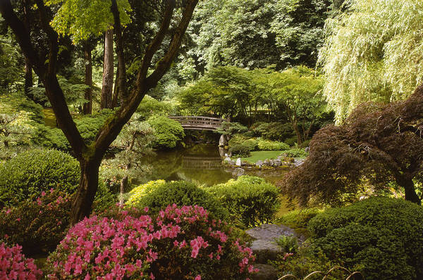 June Photograph - Bridge Over A Pond With Azalea In A by Erika Craddock