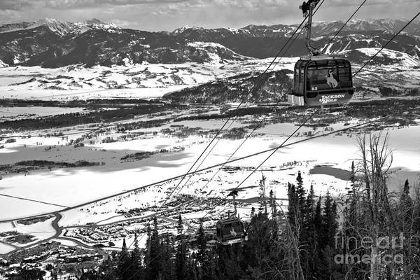 Photograph - Bridger Gondola Climbing Above The Trees Black And White by Adam Jewell