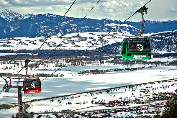 Photograph - Bridger Gondola Green Cable Car by Adam Jewell