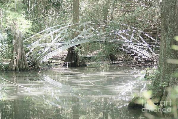 Photograph - Bridging Over1 by Merle Grenz