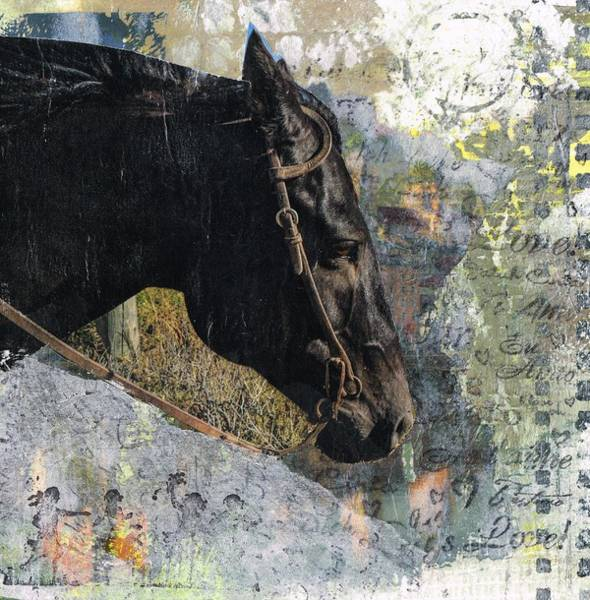 Painting - Bridled by Frances Marino