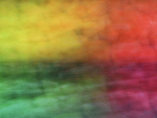 Photograph - Bright Abstract Blurred Color Blocks Of Yellow, Orange, Red And Green by Teri Virbickis