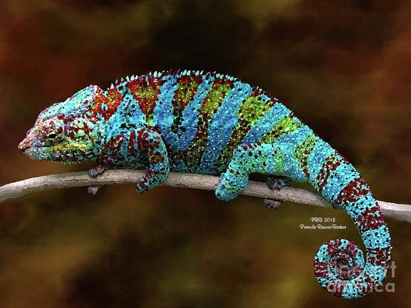Prb Mixed Media - Bright Chameleon by Pamula Reeves-Barker