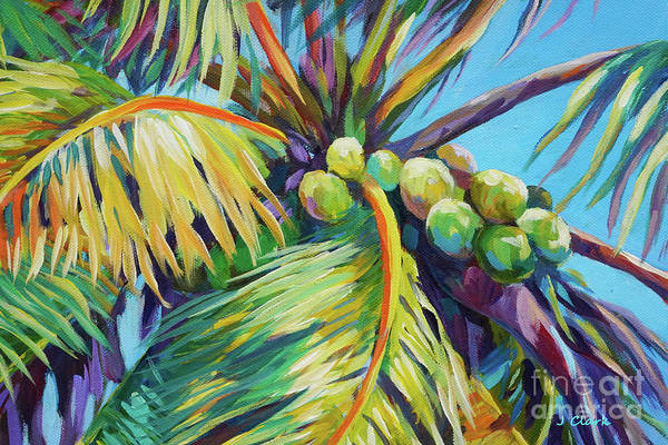 Wall Art - Painting - Bright Coconuts In A Palm Tree by John Clark