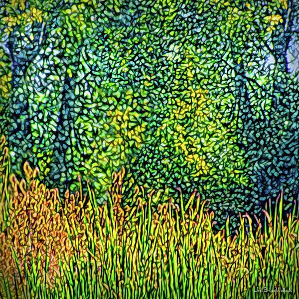 Digital Art - Bright Field Dreams by Joel Bruce Wallach