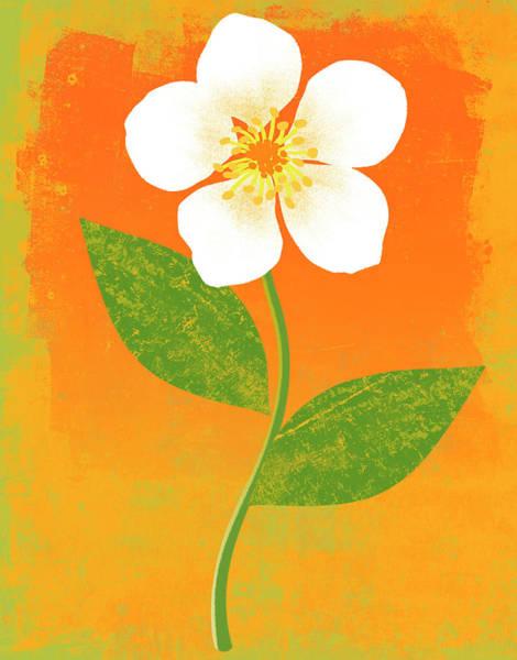 Fragility Digital Art - Bright Flower by Don Bishop