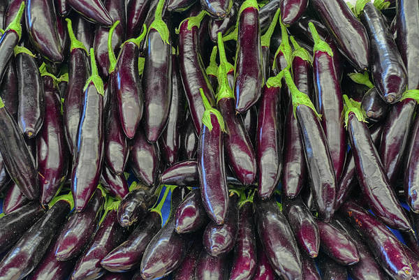 Photograph - Bright Purple Eggplant In The Central Market  by Steve Estvanik