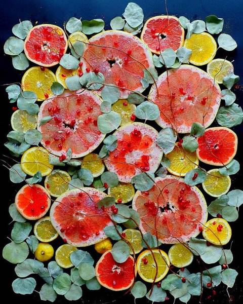 Brighter Days Citrus Art Print