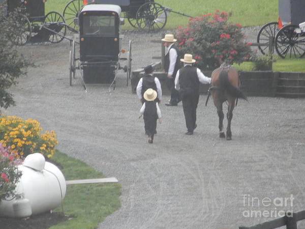 Photograph - Bringing The Horses To Barn by Christine Clark