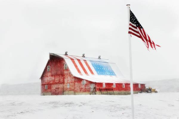 Barn Swallow Wall Art - Photograph - Brisk American Morning by Julie Hamilton