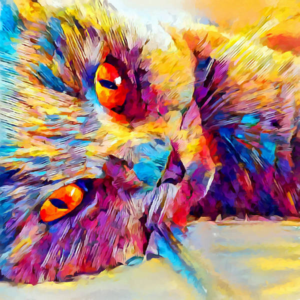 Wall Art - Painting - British Shorthair 2 by Chris Butler