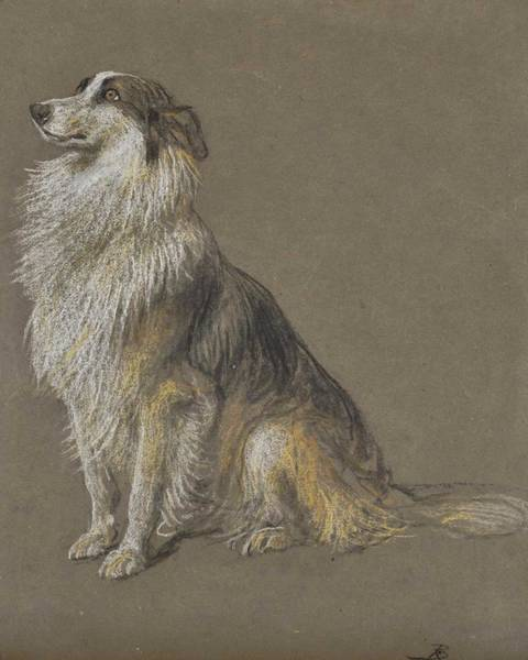 Wall Art - Painting - Briton Riviere, R.a. 1840-1920 Expectant Collie by Celestial Images