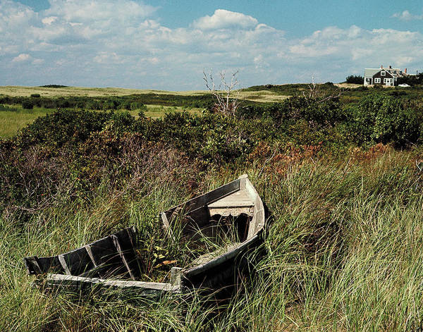 Rowboat Photograph - Broken Old Rowboat Cushioned In Tall by Alfred Eisenstaedt