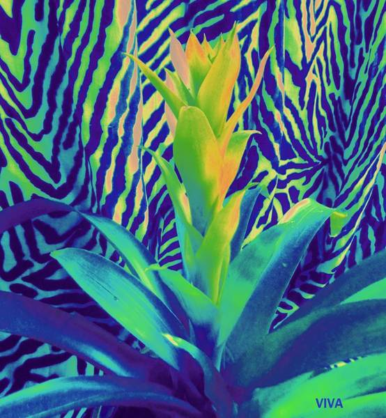 Photograph - Bromeliad Exotica Abstract by VIVA Anderson