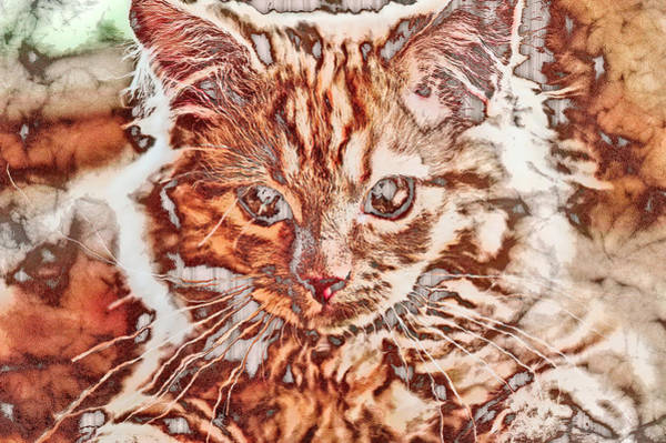 Digital Art - Bronzed Kitten by Don Northup