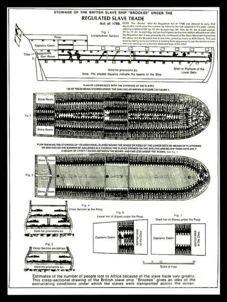 Photograph - Brookes Slave Ship Middle Passage Stowage Diagram 1788 by Doc Braham