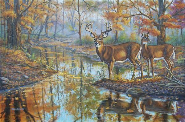Trumpeter Swan Painting - Brookside Retreat by Bruce Dumas