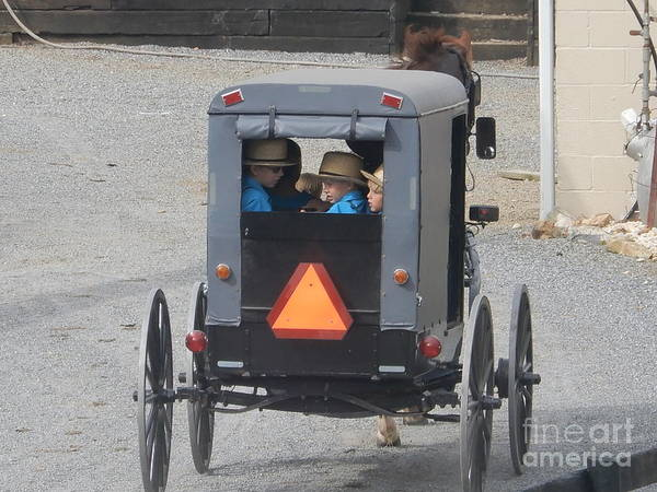 Photograph - Brothers In The Back Of A Buggy by Christine Clark