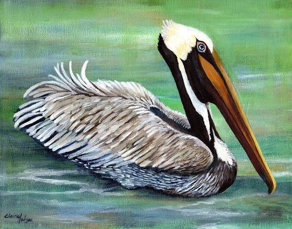 Wall Art - Painting - Brown Pelican 1 by Elaine Hodges