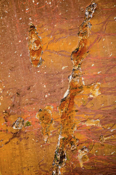 Photograph - Brownish Red Ship's Hull With Rust by Frans Blok