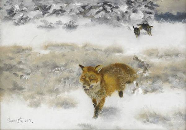 Wall Art - Painting - Bruno Liljefors 1860-1939 Fox Hunted By Stallions In Winter Landscape by Bruno Liljefors