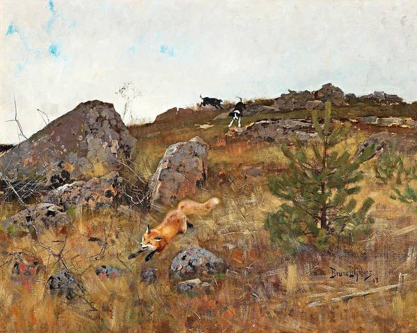 Wall Art - Painting - Bruno Liljefors,   Fox Chased By Hounds by Bruno Liljefors