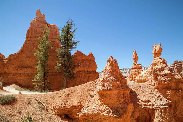 Wall Art - Photograph - Bryce Canyon Beautiful Hiking Trail  by Melanie Viola