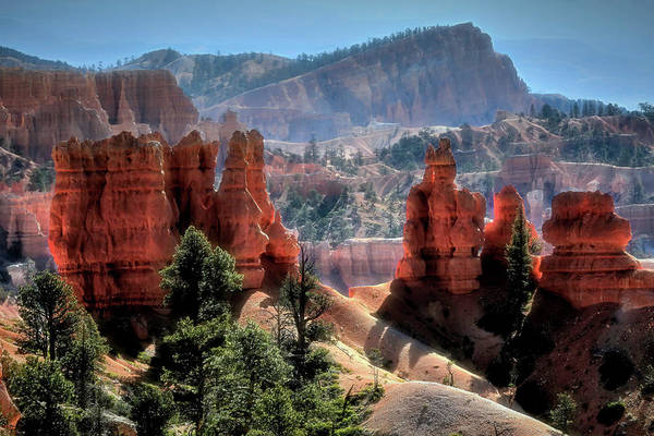 Wall Art - Photograph - Bryce Canyon Landscape by Donna Kennedy